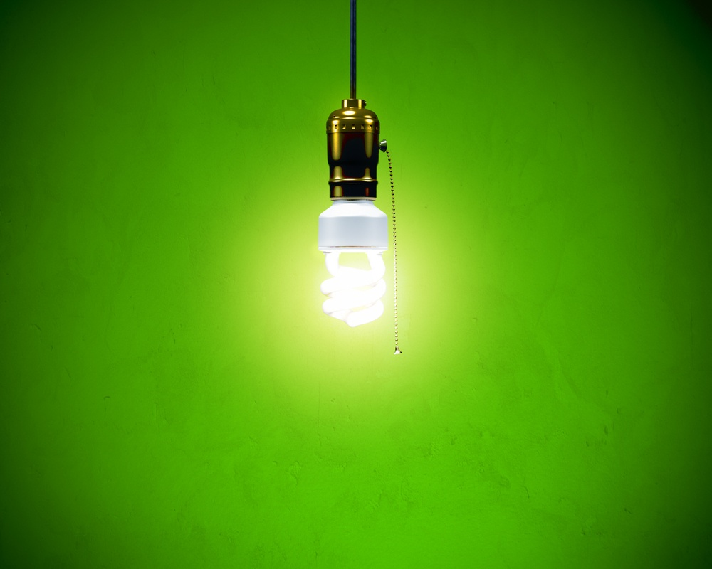 Flourescent Light Bulb